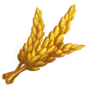 crop general wheat generic icon 5aba9bd7dcc643c3fd773f7c2b117917